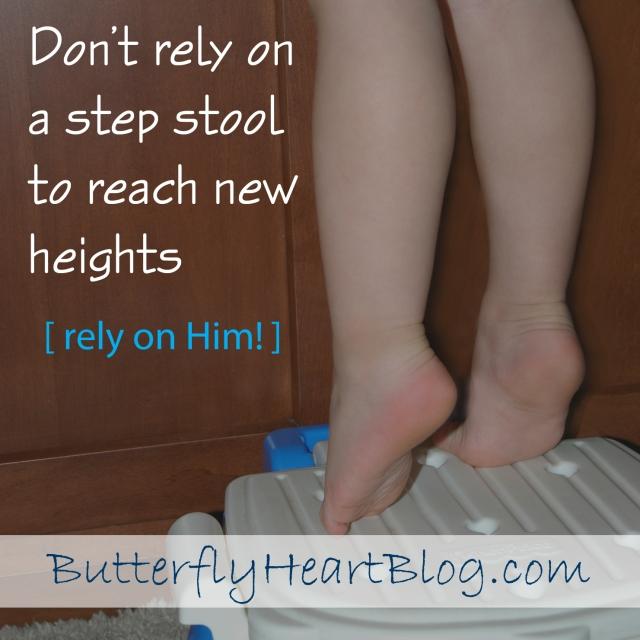 19 - step stool